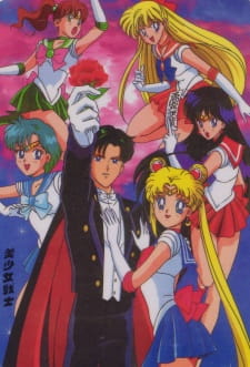 Sailor Moon R the Movie: The Promise of the Rose movie