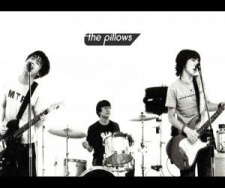 the pillows,