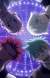 Death Parade: A Look into Life, Death, and Humanity